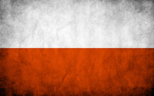 Poland Grungy Flag by think0
