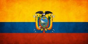 Ecuador Grunge Flag by think0