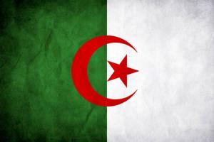 Algeria Grunge Flag by think0