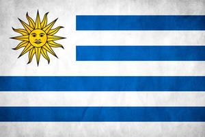 Uruguay Grunge Flag by think0
