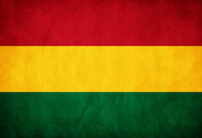 Bolivia Grunge Flag by think0