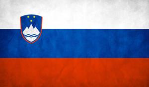 Slovenia Flag Grunge by think0