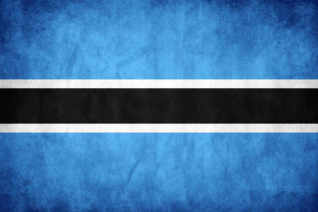 Botswana Grunge Flag by think0