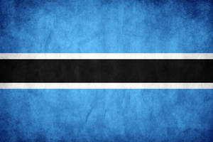Botswana Grunge Flag by think0