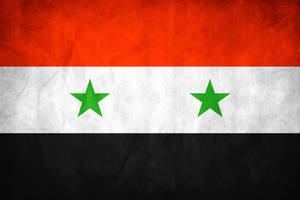 Syria Grunge Flag by think0