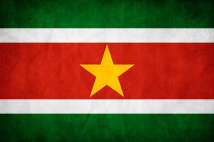 Suriname Grunge Flag by think0