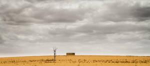 Desert by Gwangelinhael
