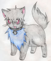 Prussia kitty by OniNatsuyo