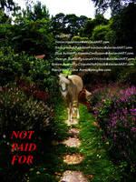 Manipulation by Horsey-Girly
