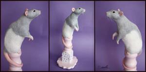 :.Little rattie.: by XPantherArtX