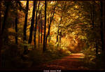 Lonely Autumn Walk by JoInnovate