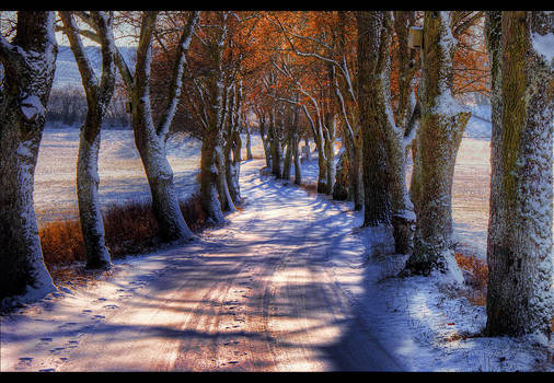 Winter's Glory by JoInnovate