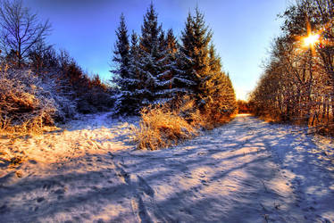 Winter at it's best by JoInnovate