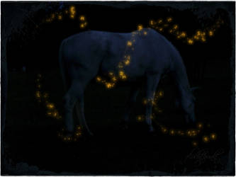 solitude at night by Fluchtpunkt
