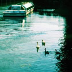 Water parade by Ambyon
