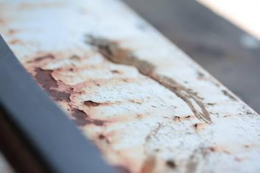 Rust In Focus by TheBishounen55