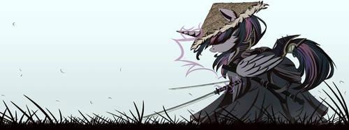 Fooooolish Samurai by NCMares