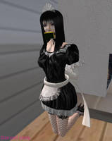 Bondage Maid at Work by EnglishDamsel