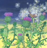Scottish Spear Thistle by LynneHendersonArt