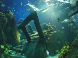 Underwater by Danielle--x