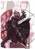Dragon Age: Warrior by MiyaAshina