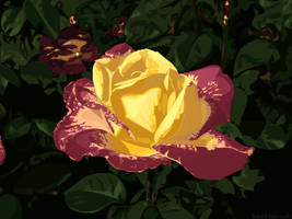 flower by kaolincash