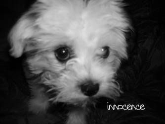 Innocence 2 by VIxEnVEx