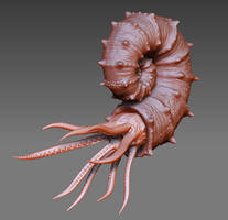 ammonite by ministerart