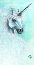 Winter Spirit by zarielcharoitite