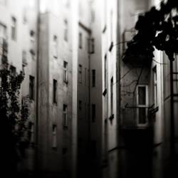 Backyards by DominikKucera