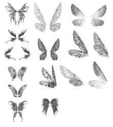 Fairy Wings JPEG by Belladona-Stock