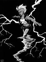 Storm commission by Tallychyck