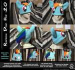 Custom Rainbow Dash Hat by CanineHybrid