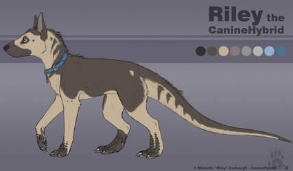 Riley the CanineHybrid by CanineHybrid
