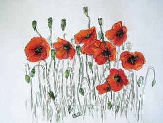 poppies by n-11