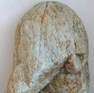 seveso60's Profile Picture