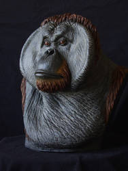 Orangutan bust by revenant-99