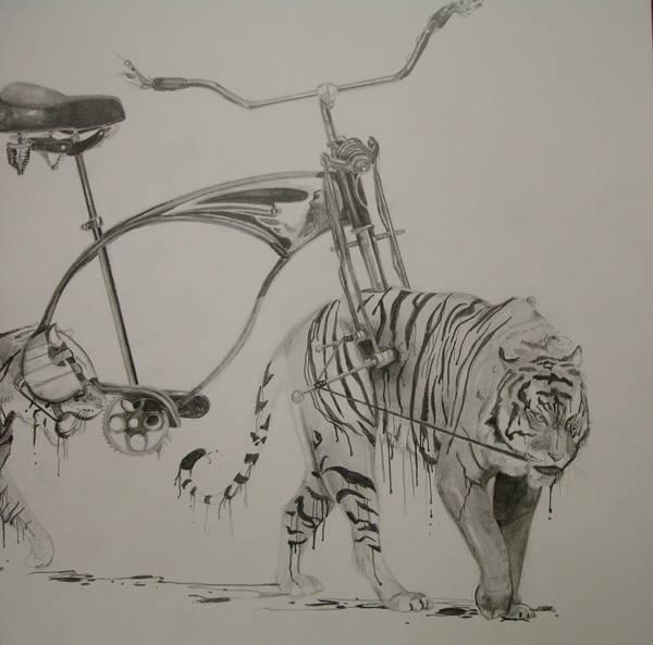 Risd Bike Drawing By Dcbryant On Deviantart