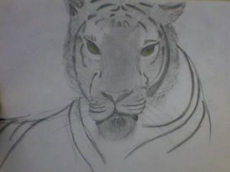 Tiger by InkaLeal