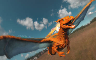 Charizard Flying by Chenks-R