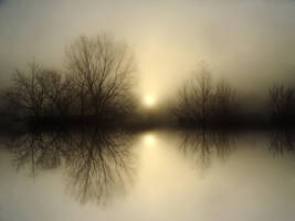 Fog Lake II by BBs-Brushes