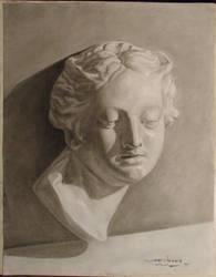 Chiaroscuro Head by shauncharles