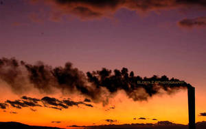 Pollution by deathly-stillness