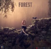 Fantasy Forest by rajrkb