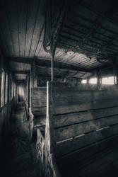 Last Ride by ashleygino