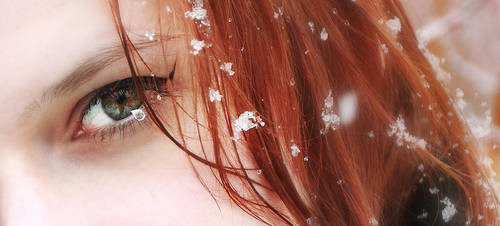 Winter Sight by alexandre-deschaumes