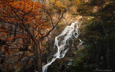 Hidden Waterfalls by alexandre-deschaumes