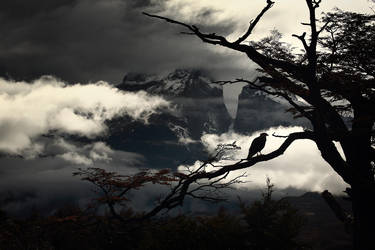 Adorn .. the Sky by alexandre-deschaumes