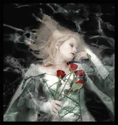 Sleeping Beauty by vampbabe