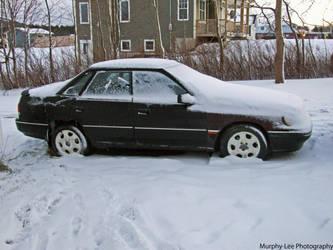 Winter sucks by lowlow64